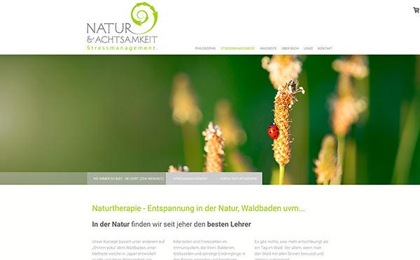 Farbschema für Branding und Website - Beispiel Website in Grün